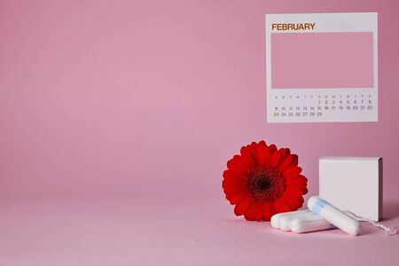 menstrual sanitary tampons, box for tampons and red flower on pink background. , feminine calendar with copy space. Feminine hygiene products Imagens