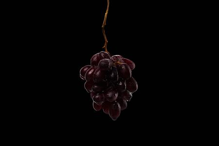 dark bunch of wet ripe grape isolated on black background
