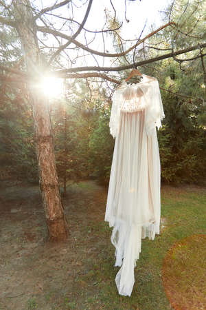 wedding dress hanging on tree in the forest. vintage or rustic Banco de Imagens - 156271293
