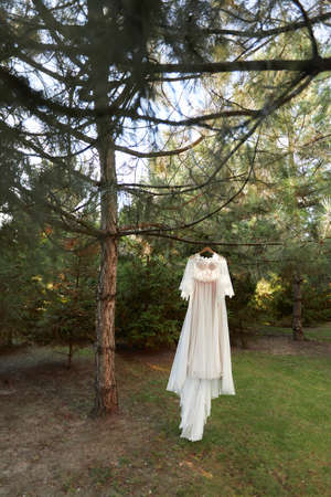 wedding dress hanging on tree in the forest. vintage or rustic Banco de Imagens - 156161702