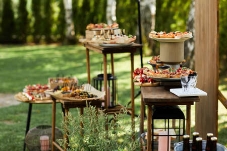 wooden buffet table with snack, appetizer and fruits decorated outdoor in summer day Banco de Imagens - 156239154