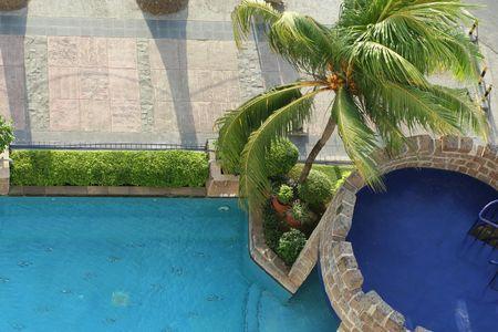 swimm: pool and coconut tree