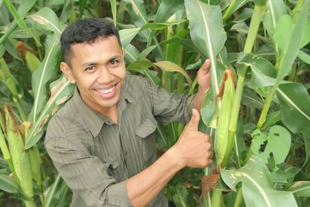 farm owner showing his high quality corn