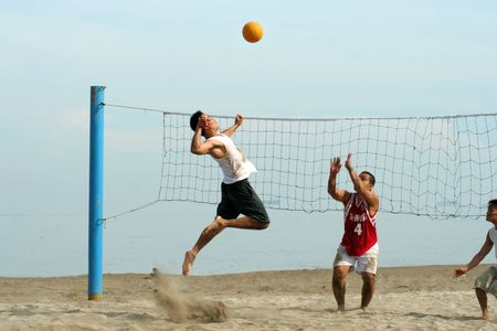 volley ball: volleyball