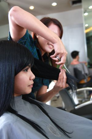 haircut or hairstyle