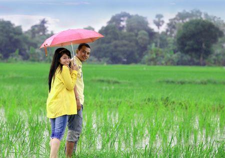 uomo sotto la pioggia: romantic couple giocare al riso fattoria