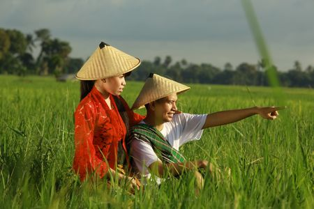 indonesia people: asian farmer