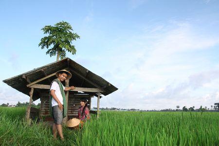 south asian: asian farmer