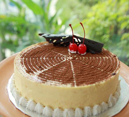 Fotografía de tiramisú delicioso pastel  Foto de archivo