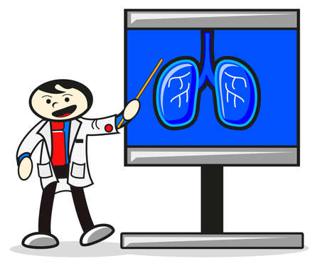 human lung: illustration of vector object
