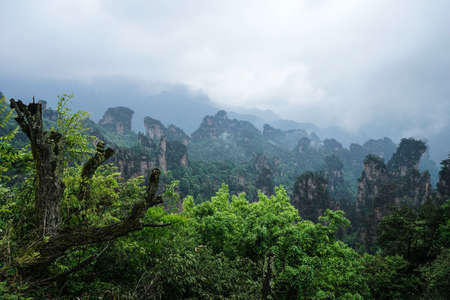 hunan: Zhangjiajie Wulingyuan Forest Park Stock Photo