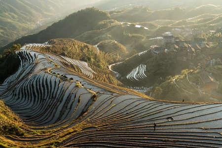Longji terrace landscape view