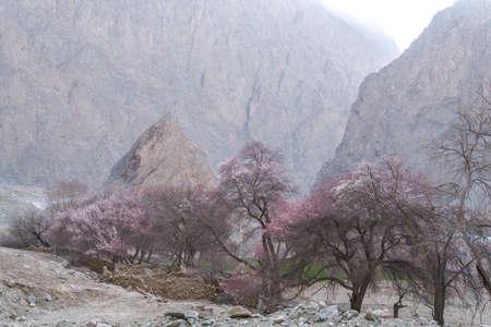 Deep scenery of Kunlun Mountain