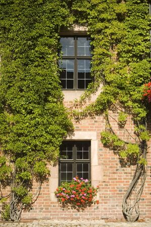 Facade of an ancient building in Nuremberg (Germany) covered with plants Stock Photo