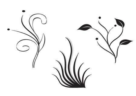 three silhouettes of ornamental plants isolated in white background.