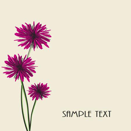 three isolated flowers Illustration