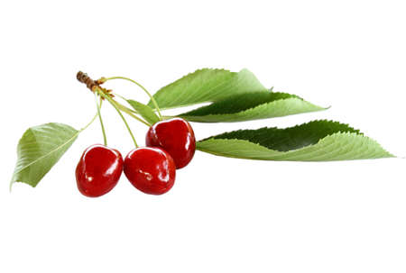 Cherry with leaves  isolated on white background Stock Photo