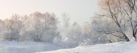 valley: winter trees near a river covered with hoar at morning lit with sunlight