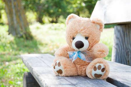 teddy bear on the bench in summer park Imagens