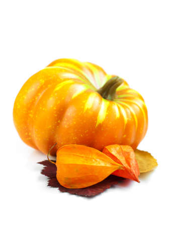 Autumn decoration with pumpkins on a white background Stock Photo - 15707505