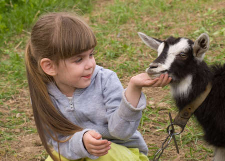 domestic animal: Little girl with goat