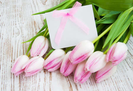 Blank card for spring, Easter, or Mothers Day with pink tulips Banque d'images