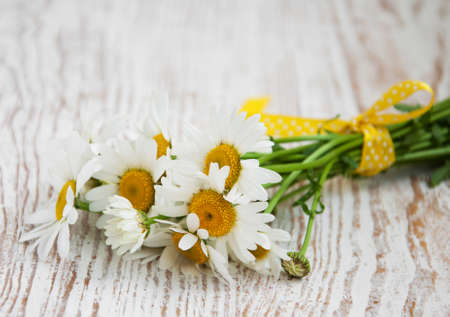 daises: Bouquet with Daisy flowers  on a wooden background