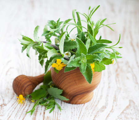 Mortar and pestle, with fresh herbs on a wooden  background photo