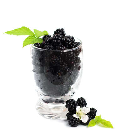brambleberry: Glass of Ripe fresh organic blackberry on a white background