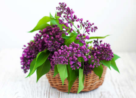 Bouquet of a lilac in the basket photo