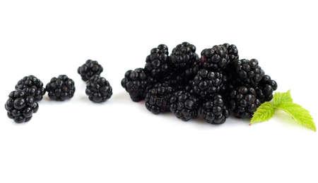 brambleberry: Ripe blackberry org�nica fresca sobre un fondo blanco