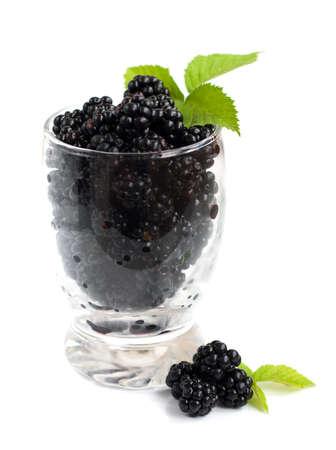 brambleberry: Copa de Ripe blackberry org�nica fresca sobre un fondo blanco