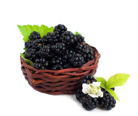 brambleberry: Cesta de Ripe blackberry org�nica fresca sobre un fondo blanco Foto de archivo