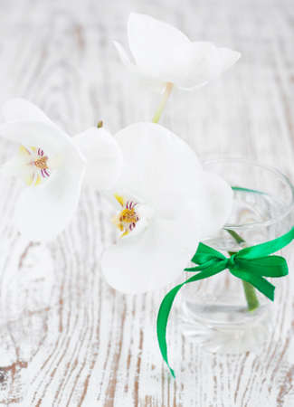 A bouquet of white  orchids in a glass photo