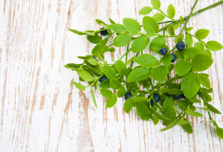 Blueberry branch with berries on a wooden background photo