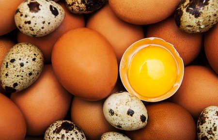 huevos de codorniz: diferentes tipos de huevos - fondo de alimentos