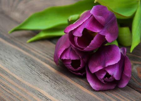 flores moradas: flores p�rpuras del tulip�n de color sobre un fondo de madera Foto de archivo
