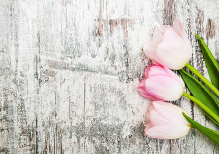 Pink tulips  on a old wooden background Stock Photo