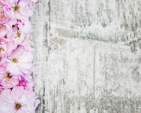 Border with Pink sakura blossom on a old wooden background