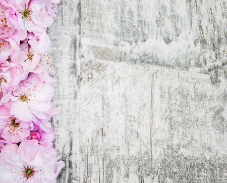 Grenze mit rosa sakura blossom auf einem alten hölzernen Hintergrund