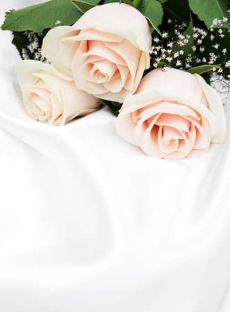 beautiful anniversary: Three roses on a white silk background Stock Photo