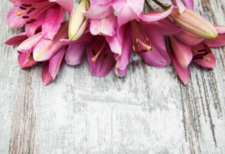 bushy plant: Pink lily on a old wooden background