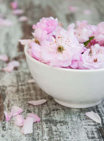 pink decorations: flowers of sakura blossoms in a bowl of water on a old wooden background