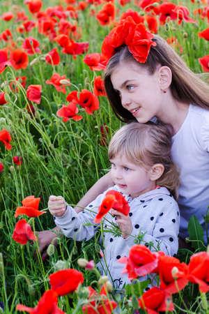 beautifu: portrait of beautifu children on poppy flower field