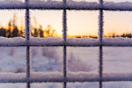 Iron lattice with ice against the background of snow. Frosty fence - winter texture Stok Fotoğraf