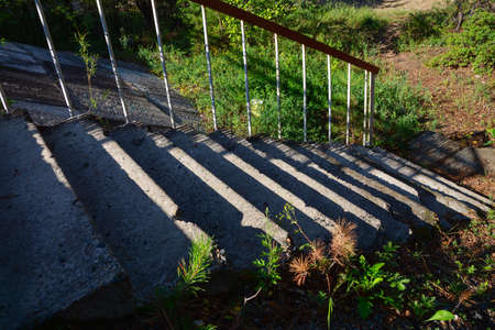 Old stone stair and surrounding vegetation