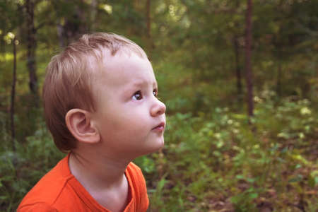 Baby looks far in year-old day in the forest. Portrait of a small child. Rendered image Banco de Imagens