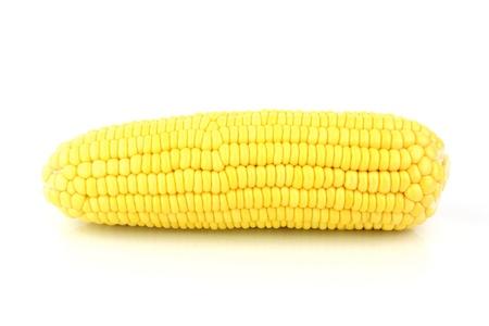 Corn Isolated White Background