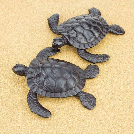 Wood Turtles