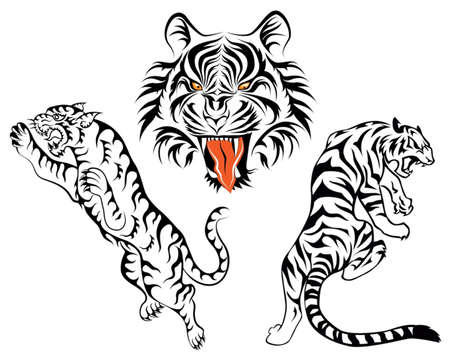 bengal: group of tiger Illustration